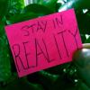 StayInReality